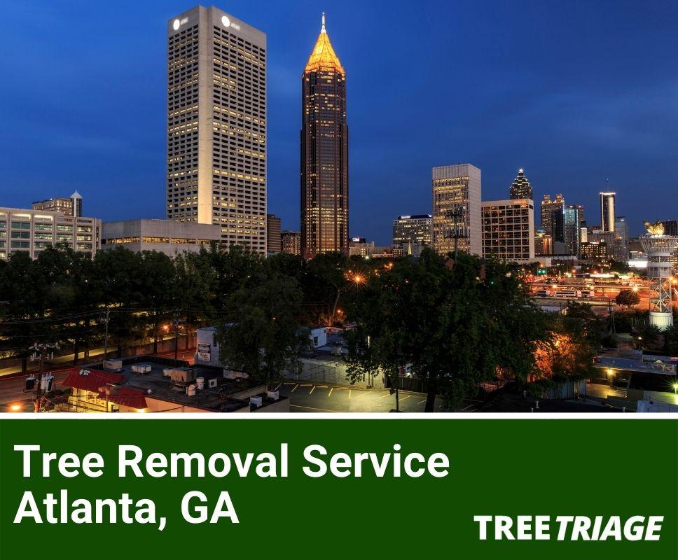 Tree Removal Service Atlanta, GA-1