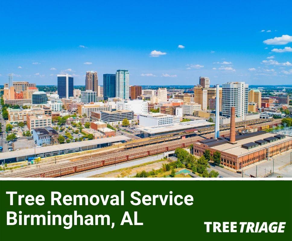 Tree Removal Service Birmingham, AL-1(1)