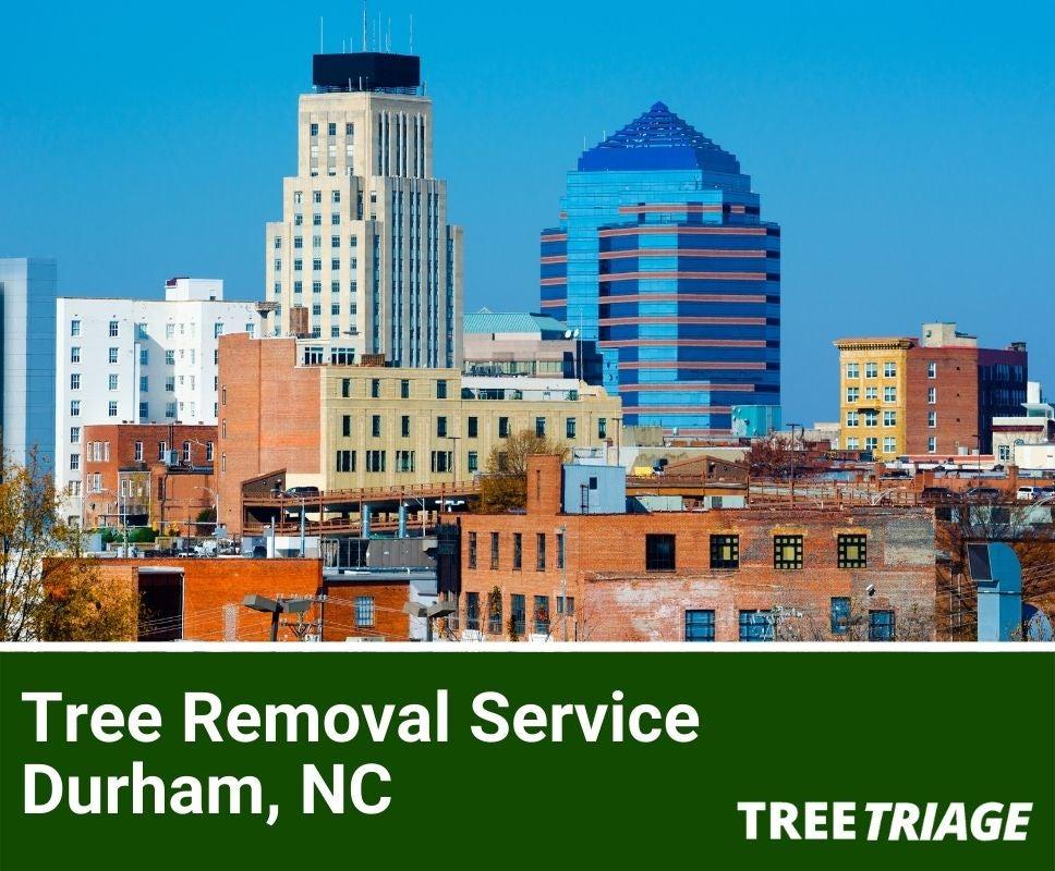 Tree Removal Service Durham, NC-1