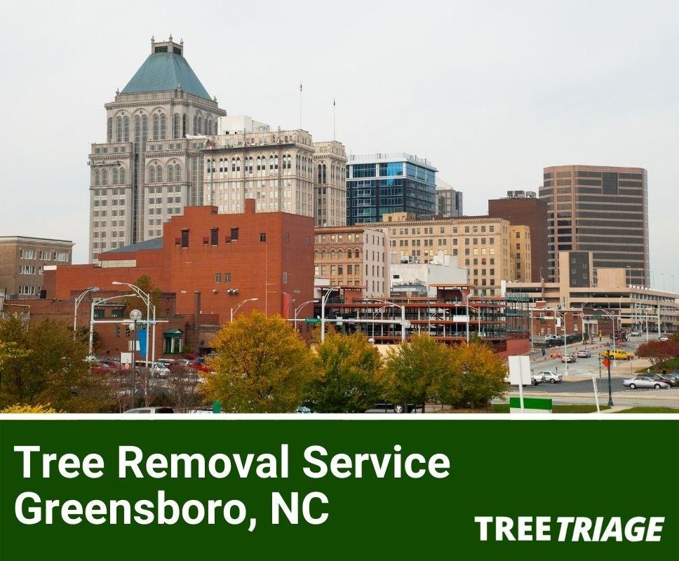 Tree Removal Service Greensboro, NC-1