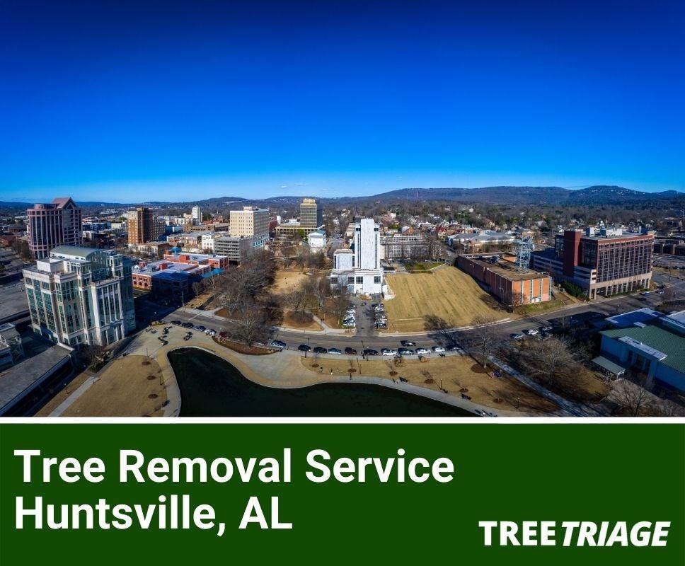 Tree Removal Service Huntsville, AL-1