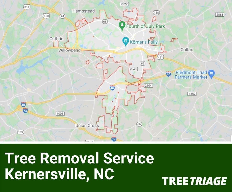 Tree Removal Service Kernersville, NC-1