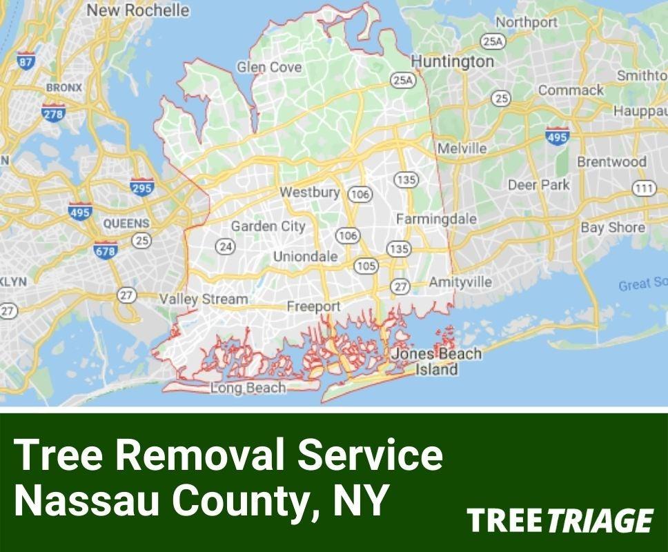 Tree Removal Service Nassau County, NY-1(1)
