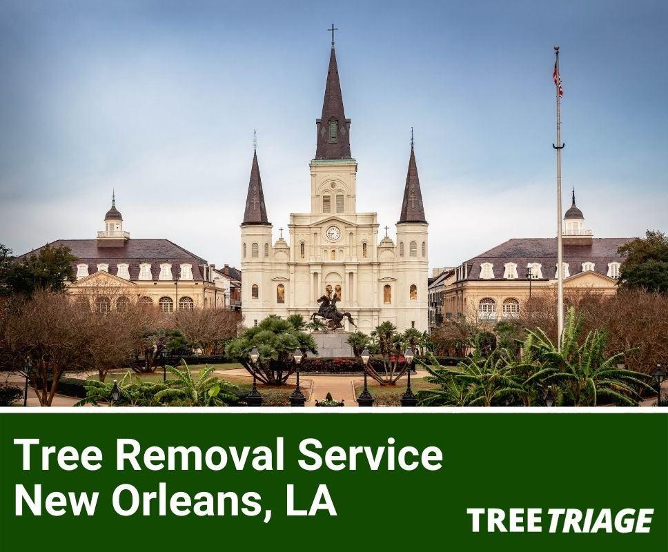 Tree Removal Service New Orleans, LA-1