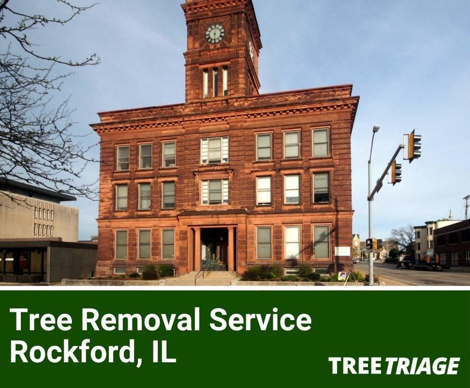 Tree Removal Service Rockford, IL-1