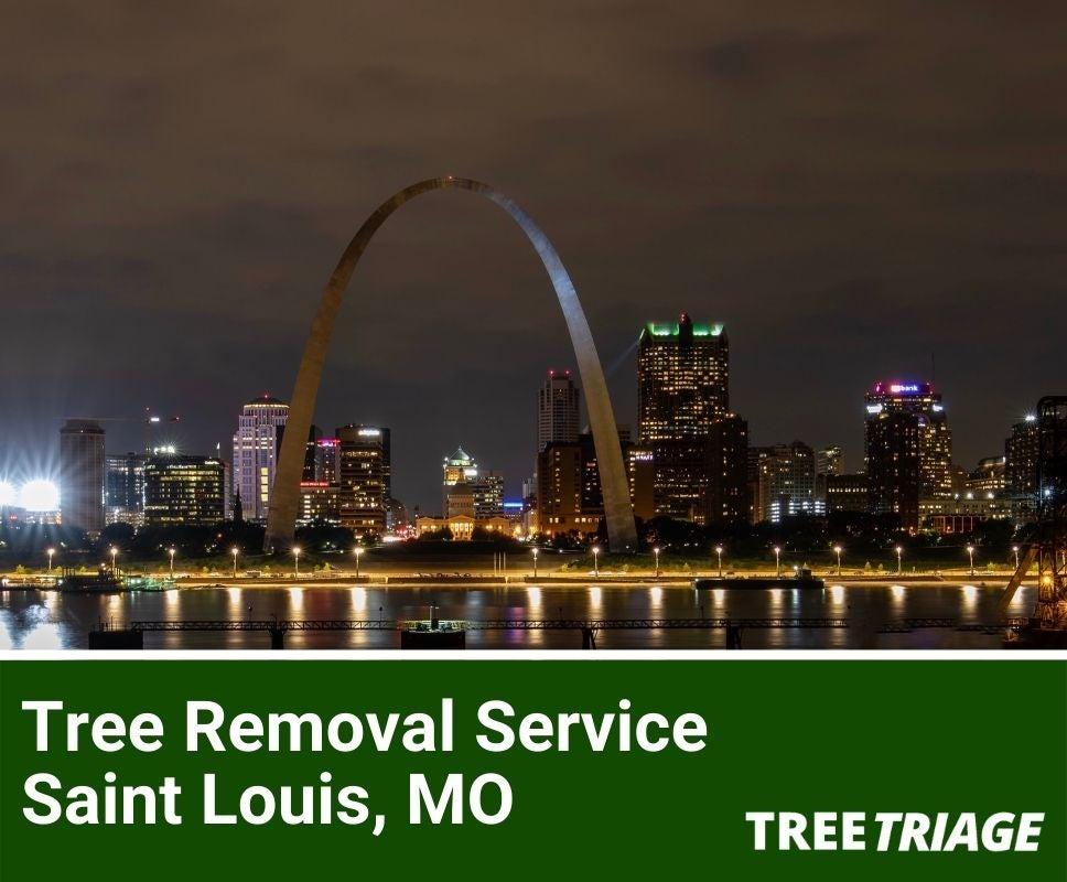 Tree Removal Service Saint Louis, MO-1