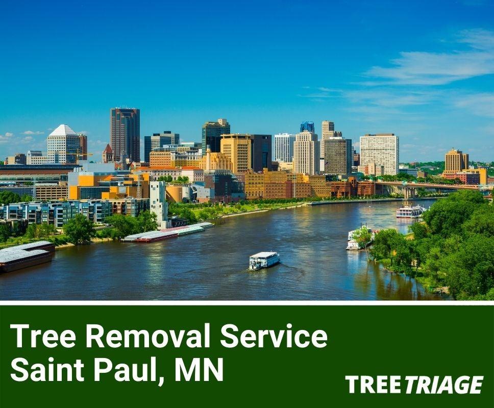 Tree Removal Service Saint Paul, MN-1(1)