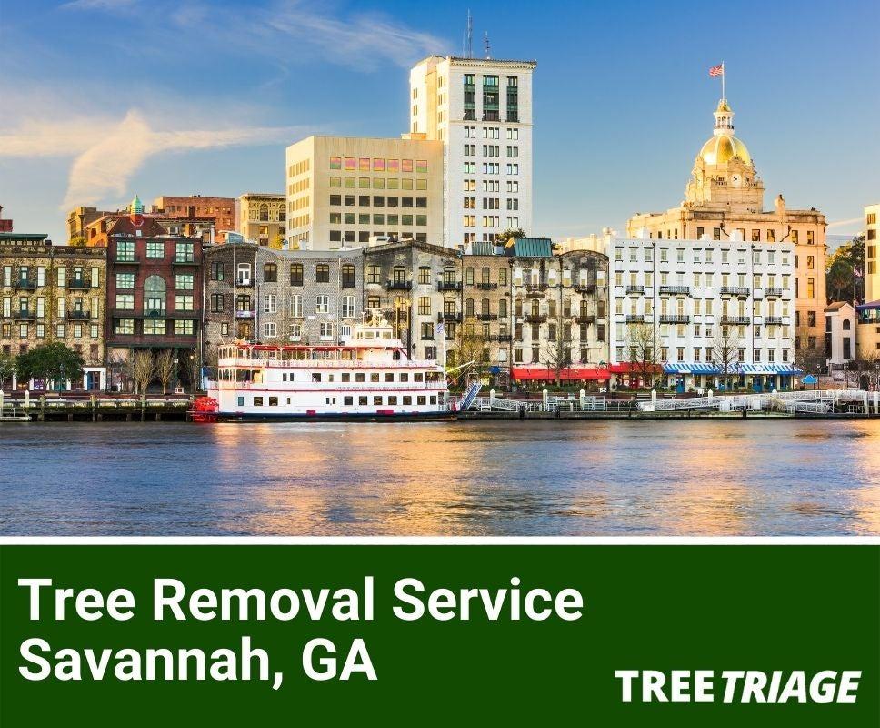 Tree Removal Service Savannah, GA-1