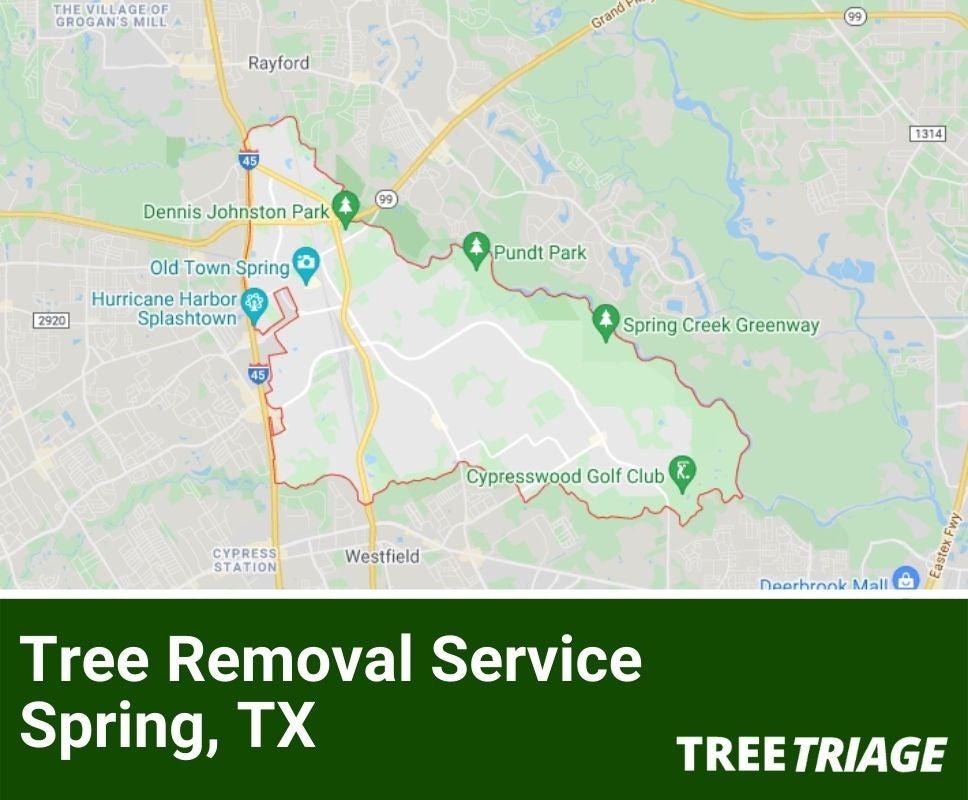 Tree Removal Service Spring, TX-1