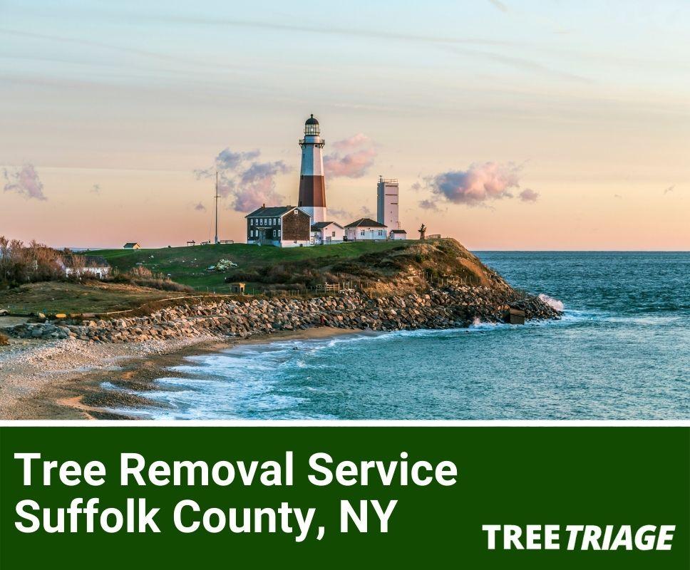 Tree Removal Service Suffolk County, NY-1