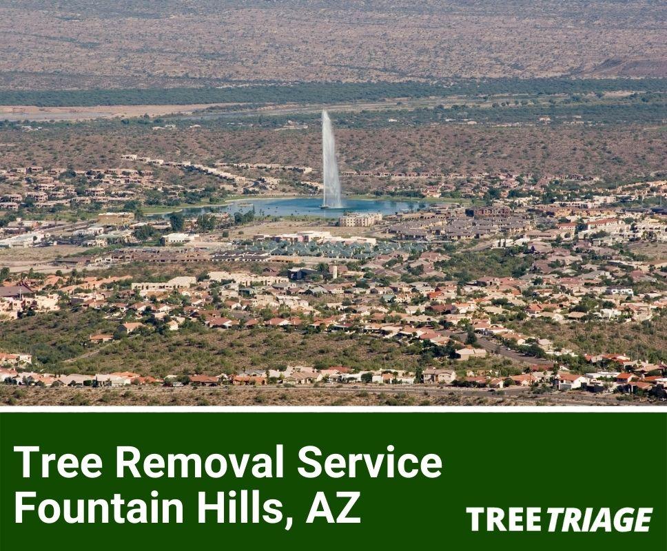 Tree Removal Service Fountain Hills, AZ