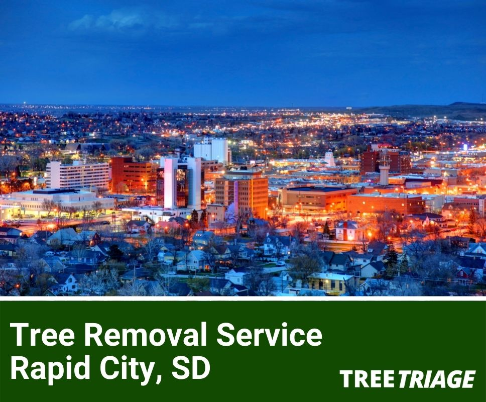 Tree Removal Service Rapid City, SD