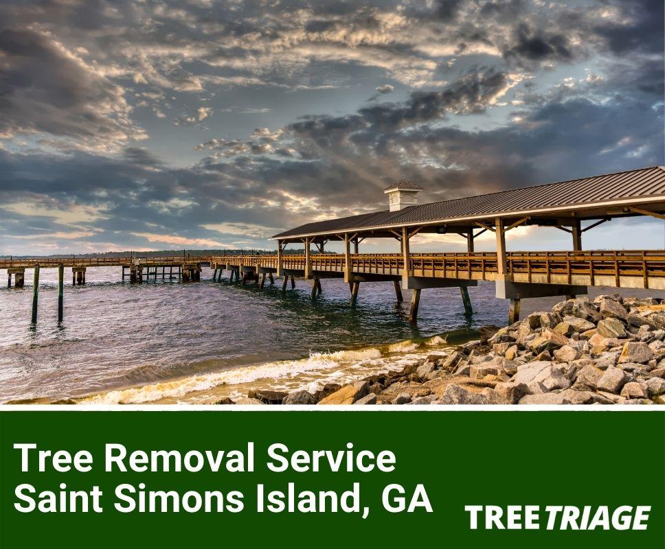 Tree Removal Service Saint Simons Island, GA